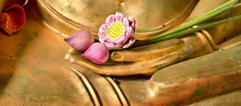 Yoga and the abundancewave